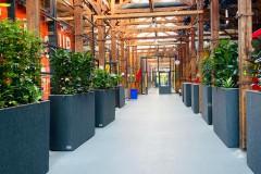 Technohubplantenbakken